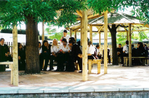 Secondary School Grounds design and build