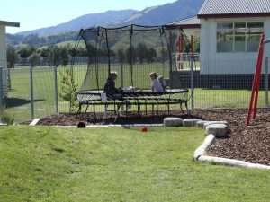 natural play, special school grounds consultancy