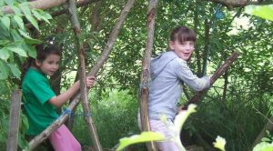 natural playscapes consultancy