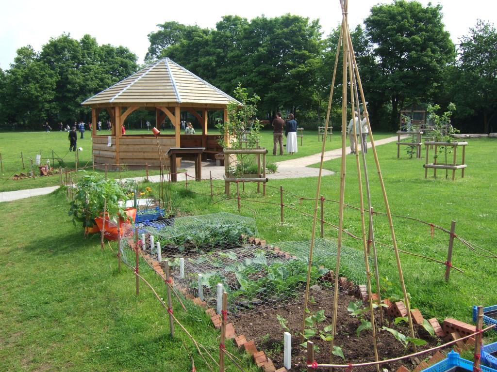 maintenance ladder- school veg garden requires 30 minutes maintenance per day