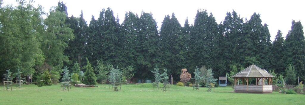 grass field reshaped for natural play area with path, shelter, specimen trees and medieval village