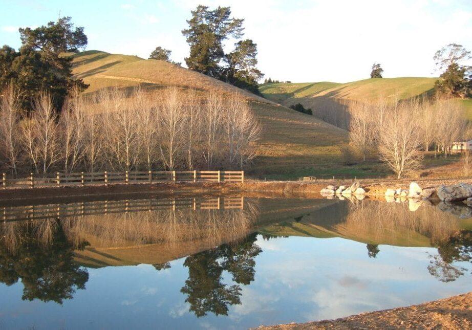permaculture landscape design company Nelson