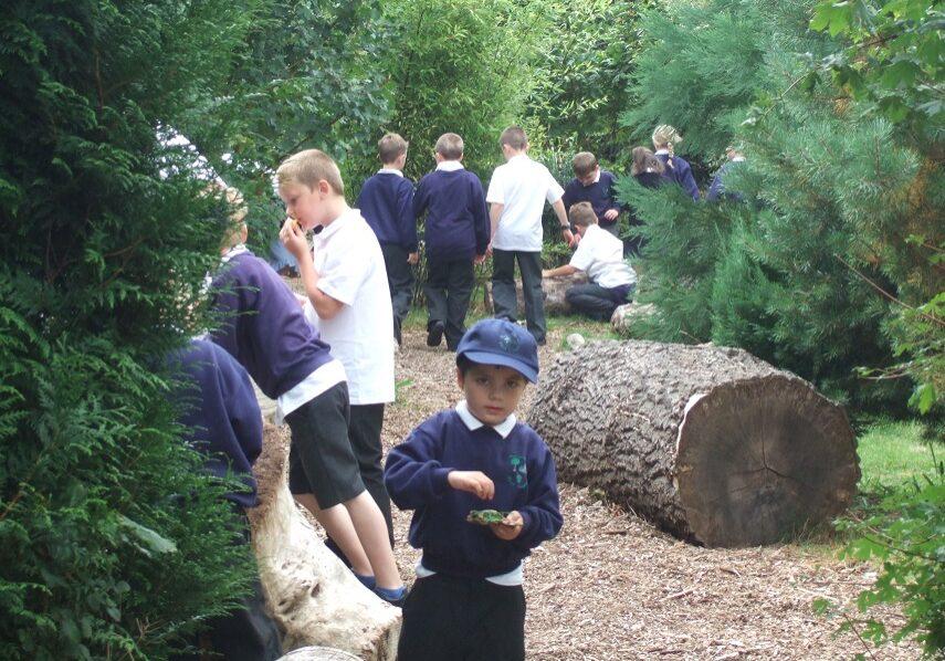 nature friendly school landscape design